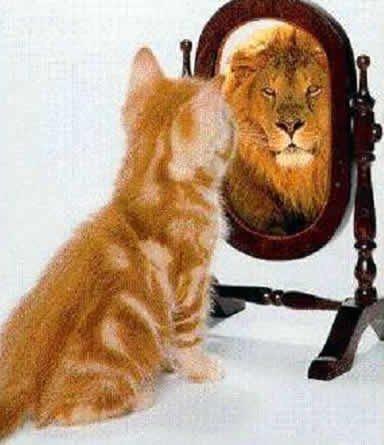 Mikado francescoji e lo specchio magico - Prendi lo specchio magico ...